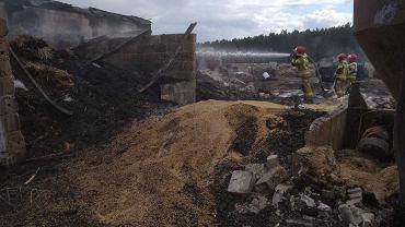 Dogaszanie pożaru w gospodarstwie w Rakowicach k. Lubawy