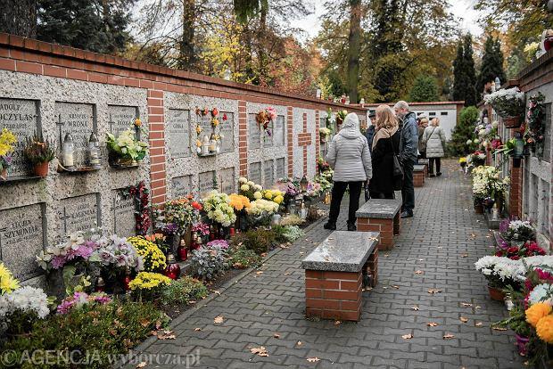 Zdjęcie numer 3 w galerii - Wszystkich Świętych we Wrocławiu. Cmentarze w kwiatach [ZDJĘCIA]