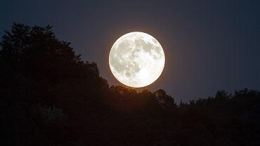 Superksiężyc. 14 listopada czeka nas największe pełnia XXI wieku