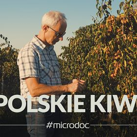 Człowiek, który dał Polakom minikiwi -