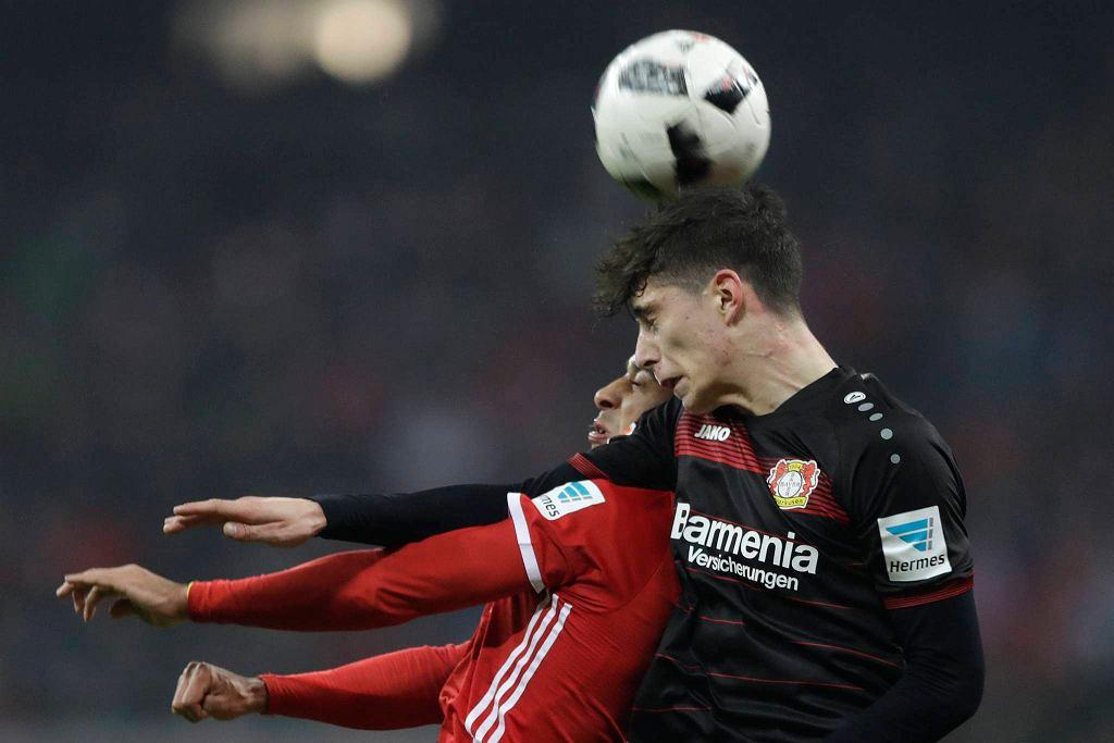 Bayern - Bayer
