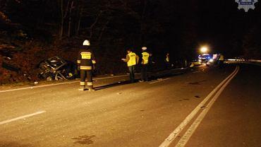 Prace służb ratowniczych i policji po śmiertelnym wypadku za Redą.