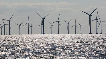 Orlen szuka projektanta farmy wiatrowej. Elektrownia powstanie na Bałtyku