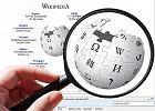 Kto pokieruje Wikipedią? Kandydatki i kandydaci pilnie poszukiwani