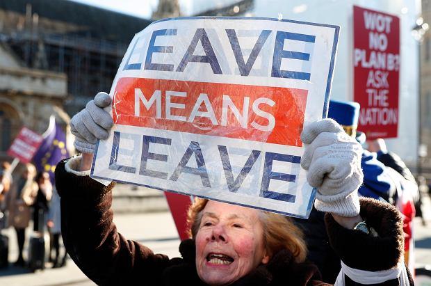Zwolenniczka Brexitu przed budynkiem Parlamentu, Londyn, 28 stycznia 2019.