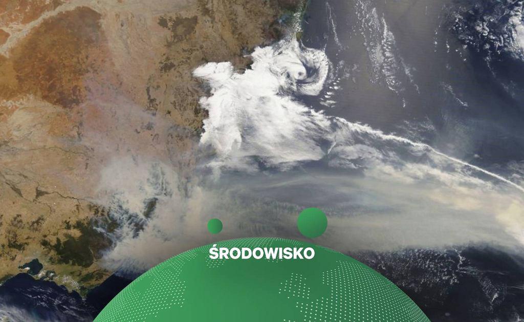 NASA: chmura pyłu z australijskich pożarów ma co najmniej raz okrążyć Ziemię.