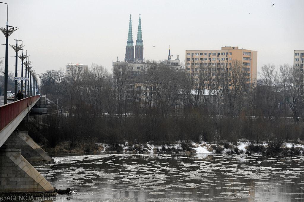 Śryż na Wiśle w Warszawie, 7 stycznia 2019