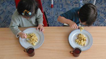 Salmonella w przedszkolach w Warszawie. Jedzenie dostarczała ta sama firma cateringowa