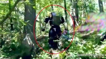 """Atlas podczas """"spaceru"""" w lesie"""
