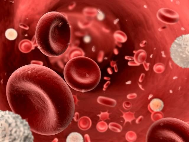 Zmiana w szpiku kostnym lub infekcja sprawiają , że u chorych na amyloidozę wykorzystane przeciwciała zamiast się regenerować zaczynają odkładać się w organizmie