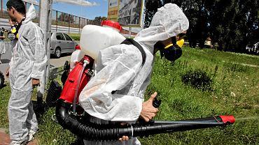 Opryski przeciw komarom i kleszczom (zdjęcie ilustracyjne)