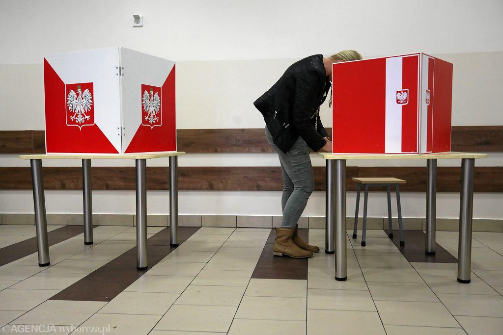 Wybory parlamentarne 2019. Lokale wyborcze Poznań. Gdzie głosować?