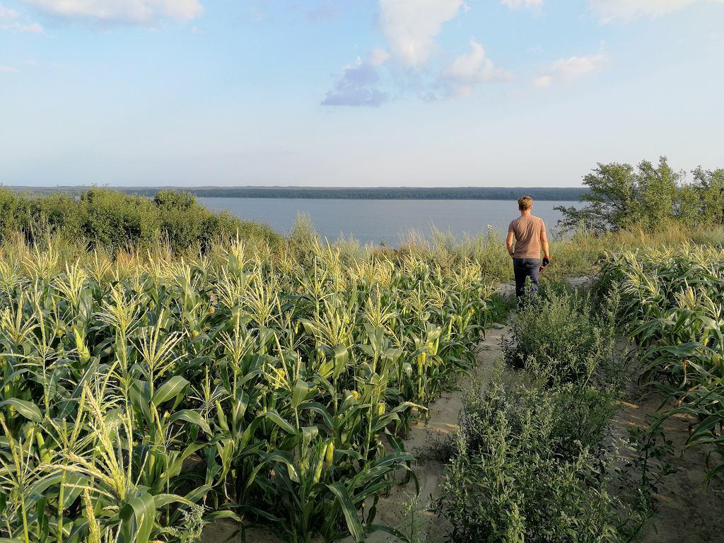Gospodarstwo leży na naturalnej skarpie, z pola rozciąga się widok na Wisłę.