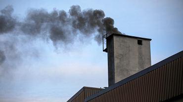 Wydobywające się z przydomowych kominów zanieczyszczenia to główne źródło smogu w Łodzi.