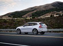 Nissan Qashqai, Volvo XC60, a może Opel Astra? Znaleźliśmy świetne oferty na bestsellerowe modele