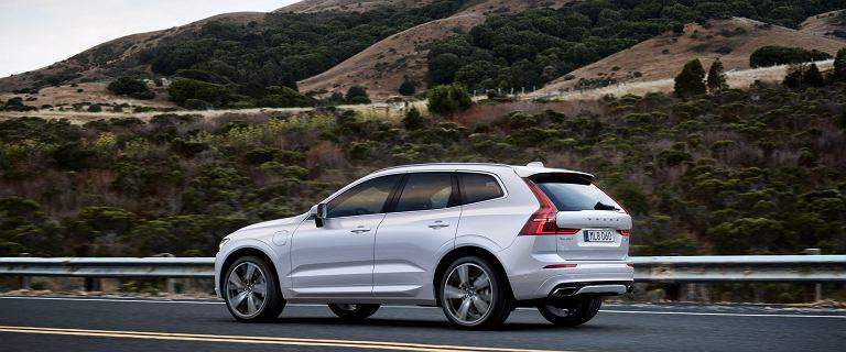 Nissan Qashqai, Volvo XC60, a może Opel Astra? 3 świetne oferty na bestsellerowe modele