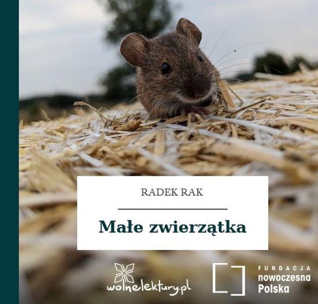 Radek Rak - Małe zwierzątka (okładka)