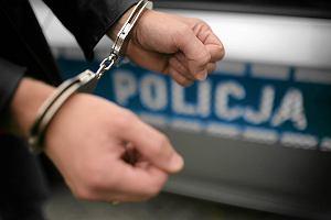 Syn wiceministra sportu został aresztowany. Był członkiem grupy przestępczej?