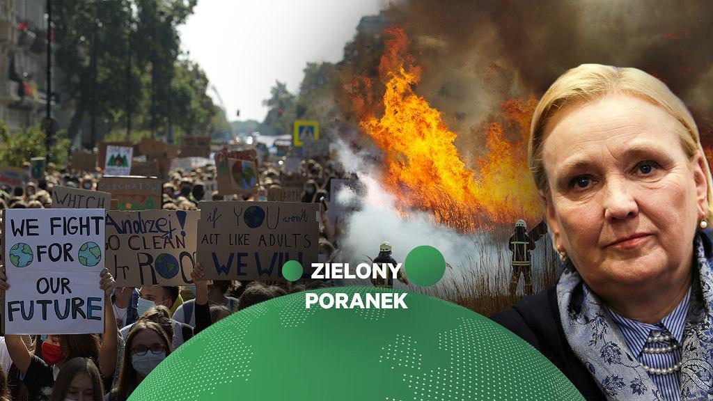 Róża Thun w Zielonym Poranku Gazeta.pl