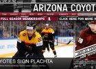 NHL. Syn trenera polskich hokeistów podpisał kontrakt z Arizona Coyotes