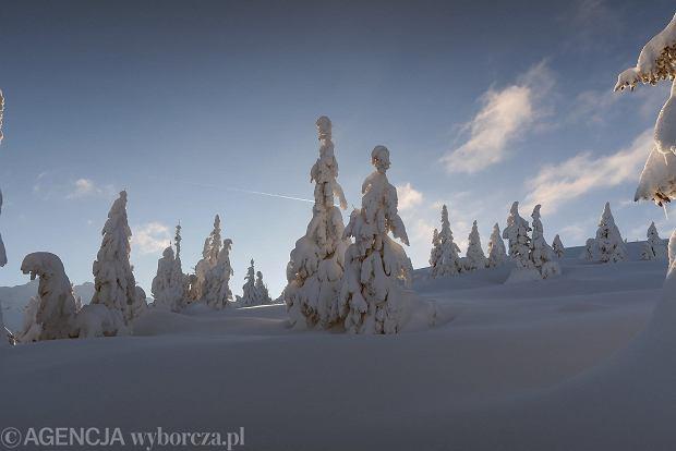 Zdjęcie numer 49 w galerii - Słońce, śnieg i szczyty. Piękna pogoda w Tatrach, zachwycające widoki