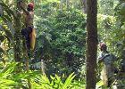 W Indiach pracownicy zamkniętych plantacji herbaty umierają z głodu