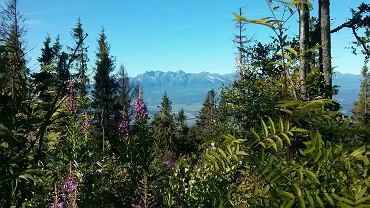 Rekonesans trasy Gorce Ultra-Trail