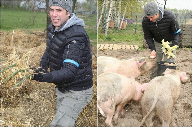 Zdjęcie numer 0 w galerii - Marcin Dorociński przerzuca siano i karmi świnie, a to nie koniec. Niewiele gwiazd by się na to nie zdobyło!