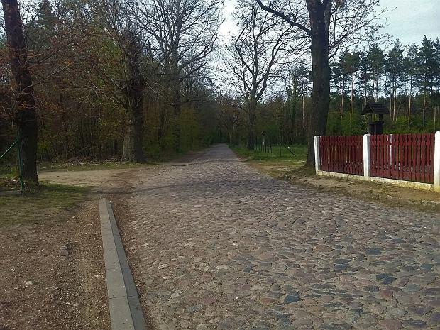 Przebieg jednej z tras w Miliczu