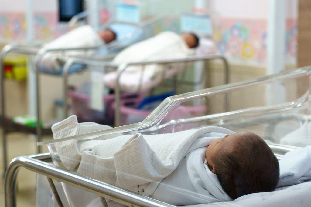 Noworodki w szpitalu, zdjęcie ilustracyjne