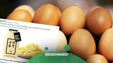 Just Egg myśli o ekspansji na rynku europejskim