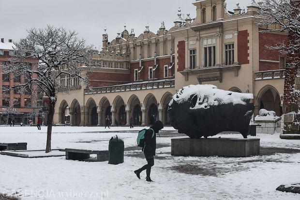Zdjęcie numer 1 w galerii - Zima w Krakowie - śnieg przykrył ulice, domy, parki [GALERIA]