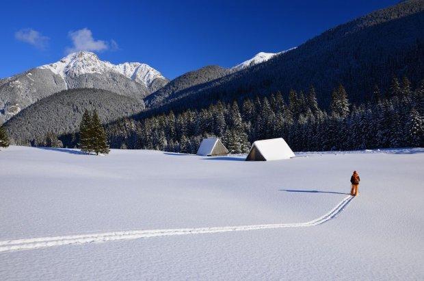 Zimą w wysokie partie Tatr nie powinni wybierać się amatorzy, bo taka wycieczka może się źle skończyć. Wędrówki po dolinach też są piękne. Na zdjęciu: Dolina Chochołowska w Tatrach.