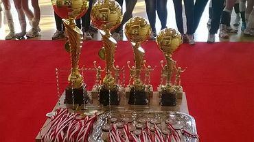 Turniej siatkówki w Międzyborowie