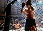 MMA. ACB i Akhmat łączą siły - powstanie nowa organizacja