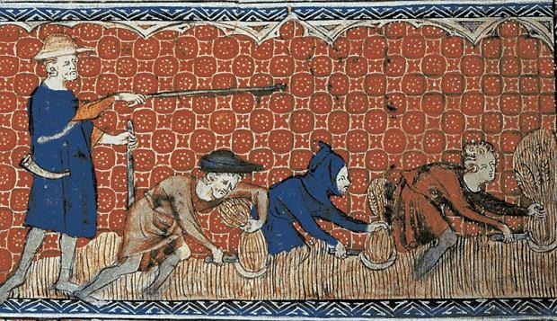 Miniatura z angielskiego 'Psałterza Królowej Marii' (ok. 1310 r.) przedstawiająca chłopów ścinających sierpami pszenicę