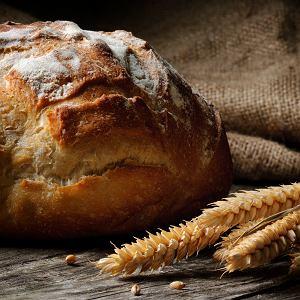 Jaki chleb jedli nasi przodkowie i ile lat ma najstarszy bochenek? Historia wypieku pieczywa