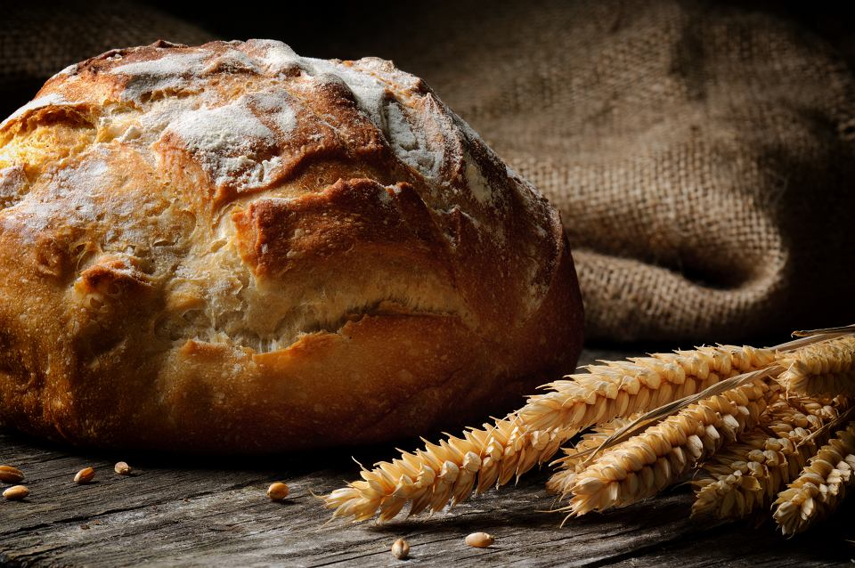 Zdjęcie numer 1 w galerii - Jaki chleb jedli nasi przodkowie i ile lat ma najstarszy bochenek? Historia wypieku pieczywa