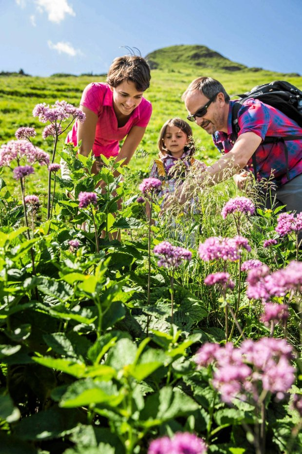 Parents and daughter discovering plants, Tyrol, Austria