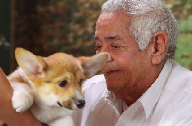 Staruszek i pies