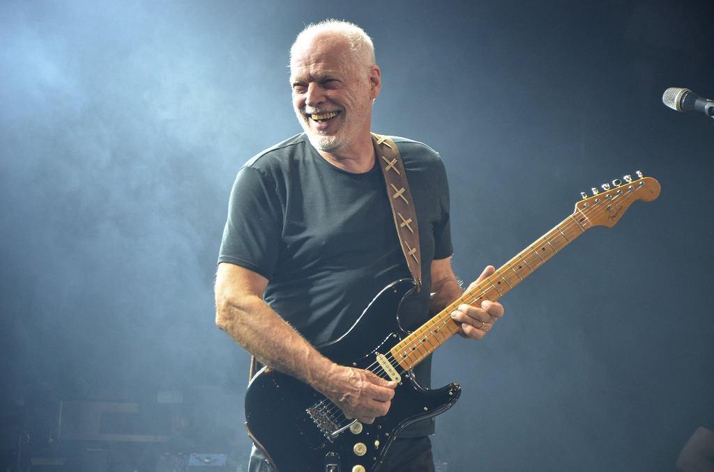'Black Strat' - David Gilmour