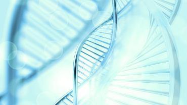 Choroba alfa-mannozydoza zazwyczaj, przez bardzo długi czas, rozwija się niezauważona