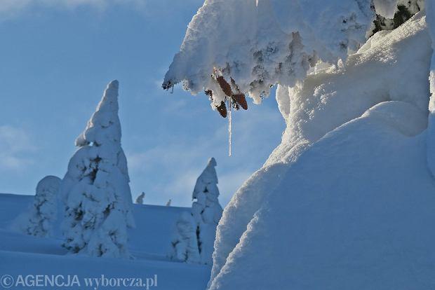 Zdjęcie numer 47 w galerii - Słońce, śnieg i szczyty. Piękna pogoda w Tatrach, zachwycające widoki