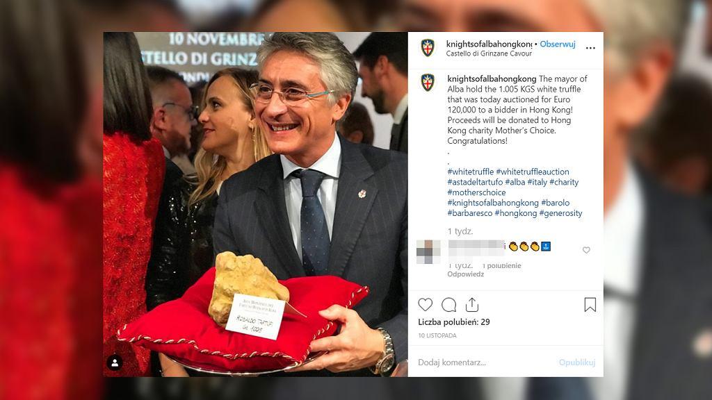 Burmistrz Alby z białą truflą o wadze 1005 gramów, za którą koneser z Hongkongu zapłacił 120 tysięcy euro