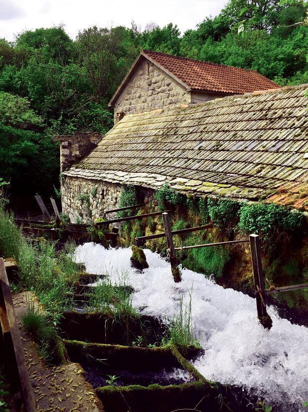 Tradycyjny wodny młyn na rzece Grab