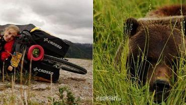 Bear Girl wśród niedźwiedzi