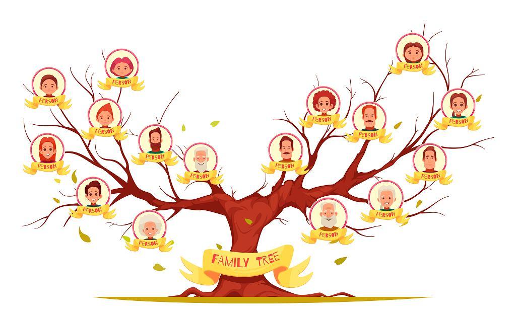 Stopnie pokrewieństwa - to relacje osób, które pochodzą od wspólnego przodka