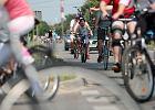 Czy powinniśmy wprowadzić prawo jazdy na rower? Cykliści są uczestnikami ruchu, a nie znają przepisów