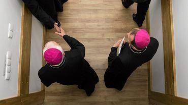 Mec. Nowak o biskupach: Przepraszają za pedofilię, gdy mają do głów przystawiony pistolet medialny