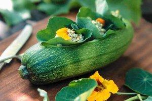 Lekkie przystawki zawinięte w młode liście winogron, botwinki i radicchio